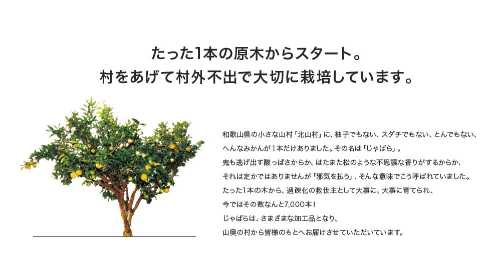 たった1本の原木からスタート。村をあげて村外不出で大切に栽培しています。