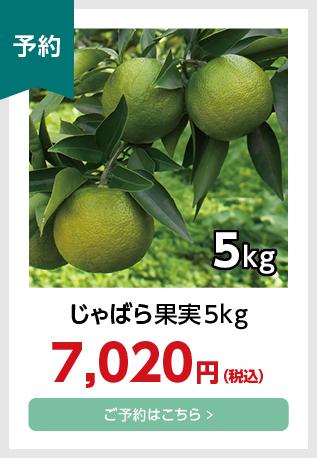 果実5kg