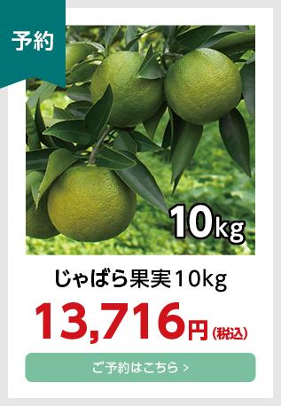 果実10kg